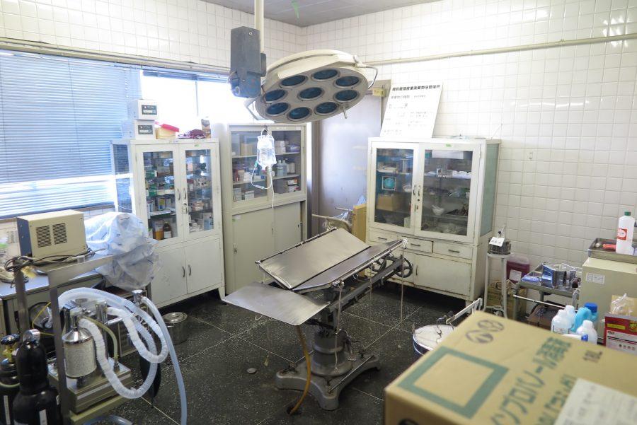 神奈川動物保護センターの手術室