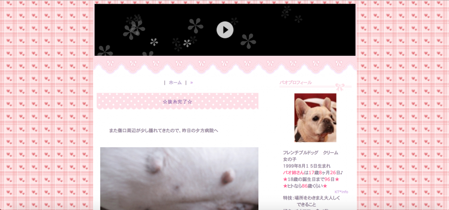 乳腺腫瘍のブログのトップページ
