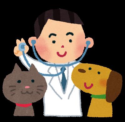 犬猫と獣医師さん