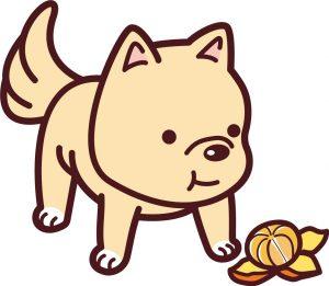 みかんを食べる犬のイラスト