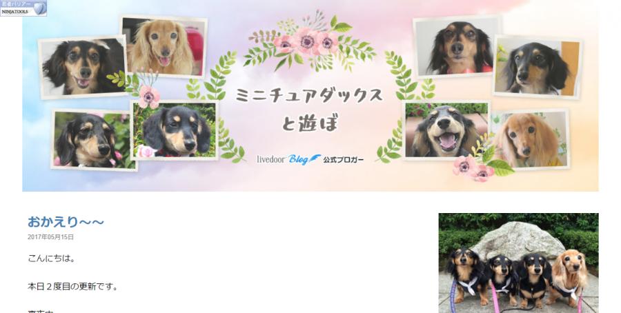 FireShot Capture 2 - ミニチュアダックスと遊ぼ Powered by ライブドアブログ - http___kawaiiinu.blog.jp_