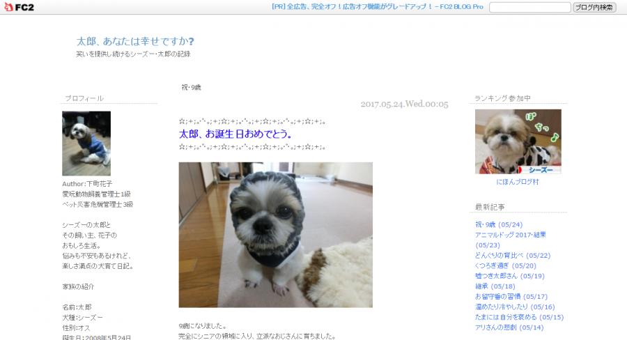 シーズーのブログ