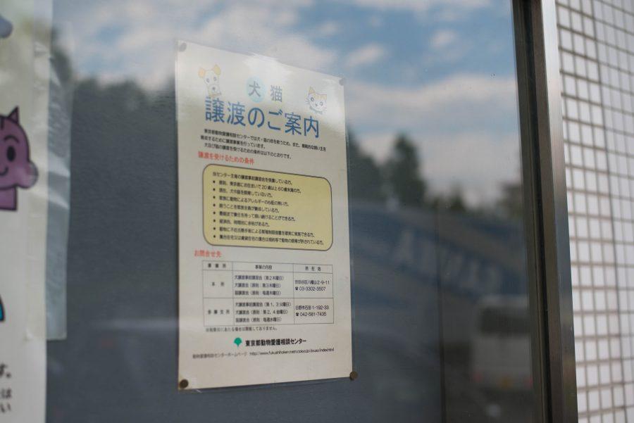 東京都動物愛護相談センター