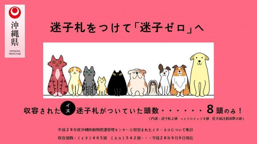 迷子札装着を促す沖縄県のポスター
