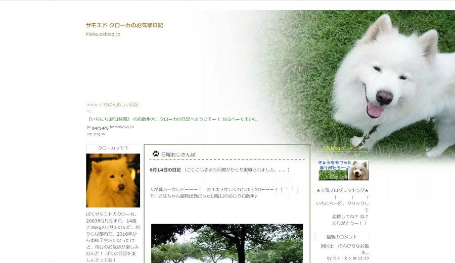サモエドのブログ「サモエド クローカのお気楽日記」