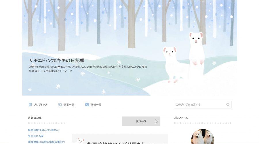 サモエドのブログ「サモエドハク&キキの日記帳」