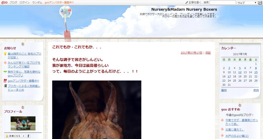 ボクサー犬のブログ「Nursery&Madam Nursery Boxers」