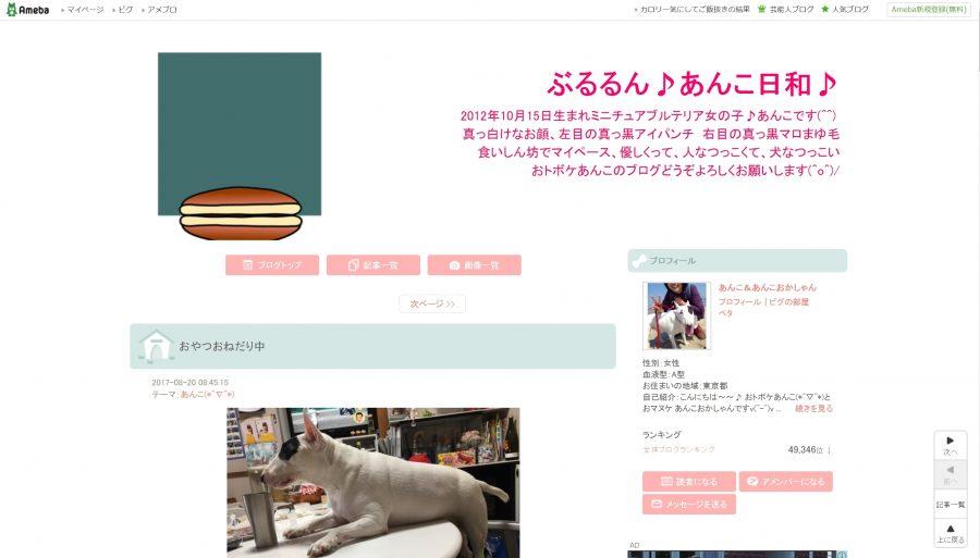 Miniature Bull Terrier blog