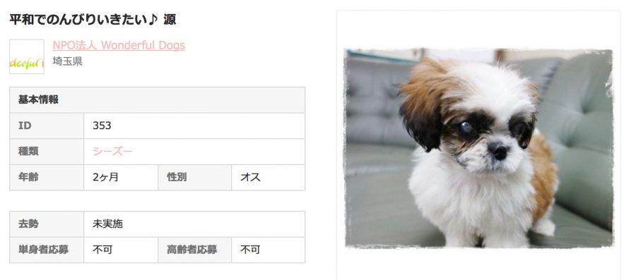 OMUSUBI保護犬情報