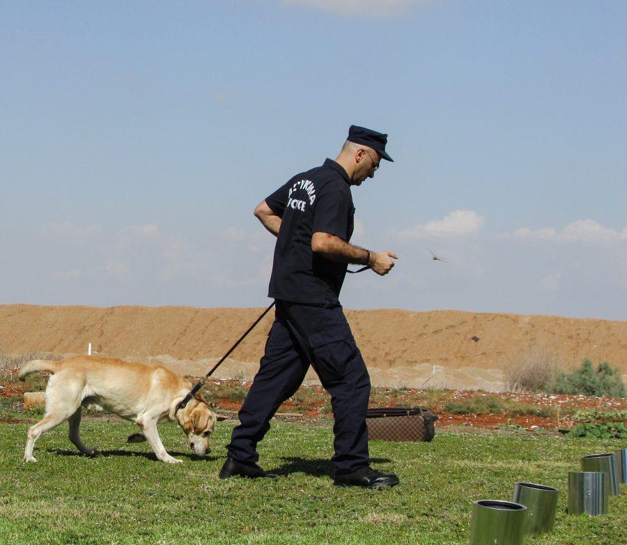 警察官と犬
