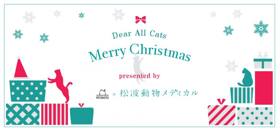 フロントライン プラス・クリスマスキャンペーン開催中 12月はノミ・マダニ対策強化月間