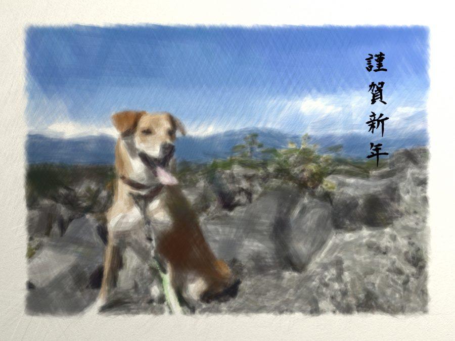 犬のイラスト風年賀状