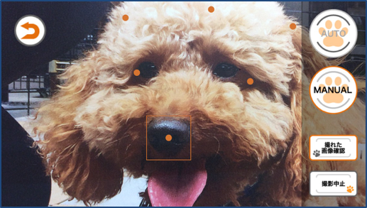 鼻紋照合撮影