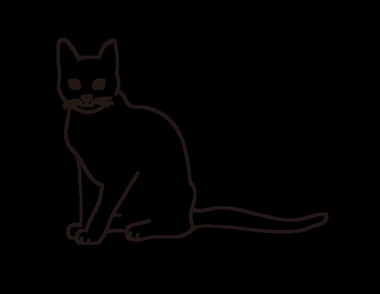 動物 書き方 イラスト 描き 猫の目 素材 Wwwthetupiancom